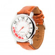 Sleek leather watch — Foto de Stock   #75270187