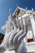 Naka or Thai dragon stair at Wat Nak prok. — Photo