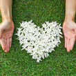 Hands with flowers shaped as heart — Stock Photo #51829659