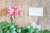 Christmas flower — Stock Photo