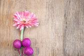 Flowers on wooden — ストック写真