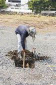 Worker  to dig a hole. — Stock Photo