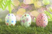 Easter eggs and daisies in the grass — Stock Photo