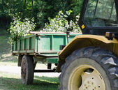 Yellow tractor with green trailer — Stock Photo