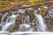 Cascade sur Moss et Deadwood — Photo