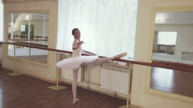 Ballerina exercising at the barre — Stock Video
