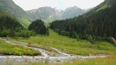 Beautiful mountain landscape — Stock Video