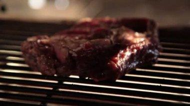 Filete asado a la parilla — Vídeo de stock