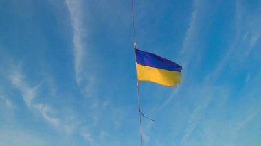Ukrainian flag waving in the wind — Stock Video