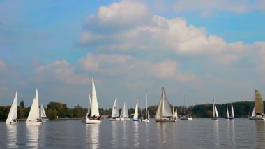 Many sailboats and yachts gathered for regatta, sport, race — Stockvideo