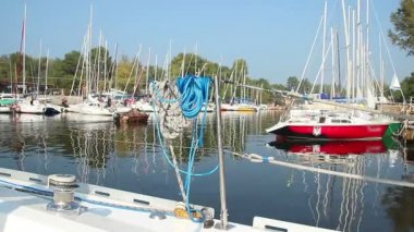 Moored sailboats in dock — Stock Video