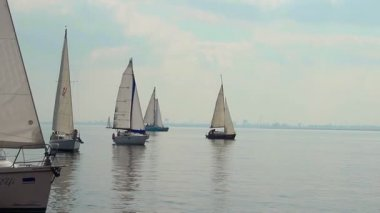 Sailing boats in open sea — Stock Video