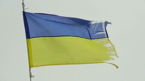 Ukrainian flag waving in wind — Vídeo de stock