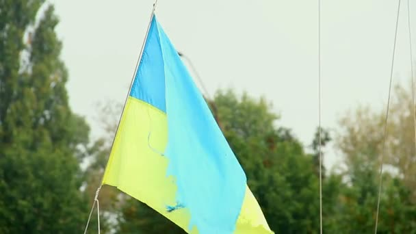 Ukrainian flag waving in the wind — Vídeo de stock