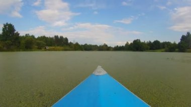 Boat moving through green polluted water — Stock Video