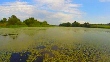 Wide river scenery — Stock Video