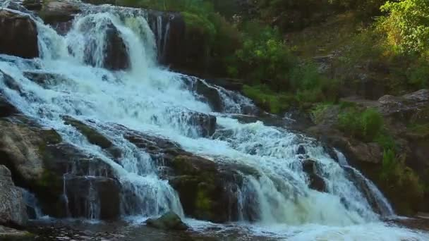 Cascade waterfall in the woods — Vídeo de stock