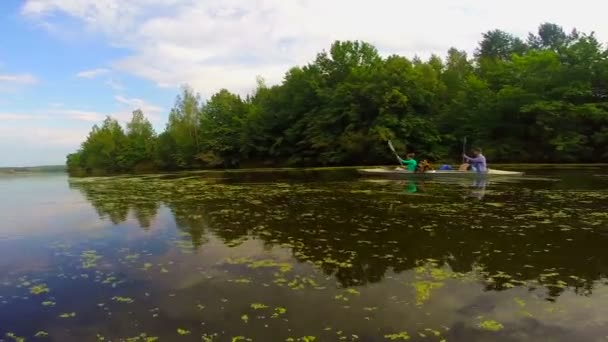 Tourists kayaking down the river — Vidéo