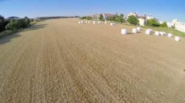 Top view of endless harvested field. Aerial shot of farming land. Agriculture — Vidéo
