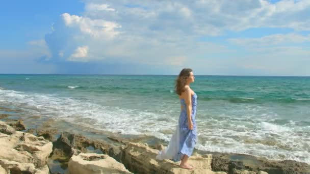 Pretty brunette enjoying beautiful view on sea shore, cloudy sky above water — Vídeo de stock