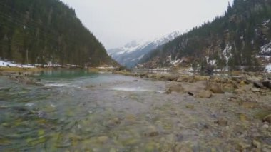 Stony rapids on mountain river, clean bottom seen through transparent water — Stock Video