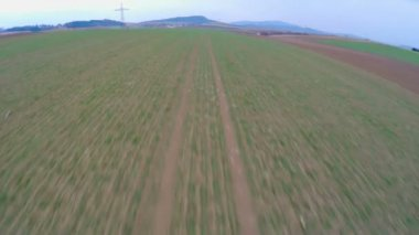 Green farmland, aerial view of long cultivated fields. Agriculture, farming — Stockvideo
