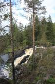 Karelia — Stock Photo