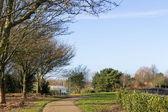 Hermoso parque en primavera — Foto de Stock