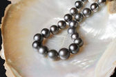 Black pearl necklaces on pearl shell — Stock Photo