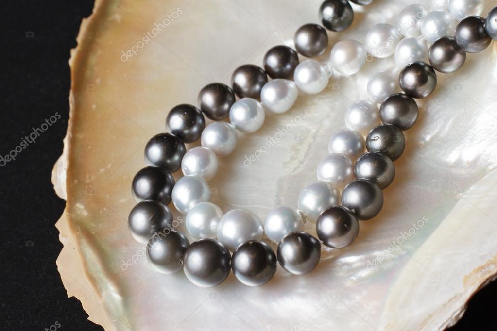 Collares de perlas blancas y collares de perlas negras en la concha de nacar \u2013 Imagen de stock