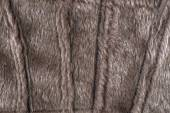 Fur structure — Stock Photo