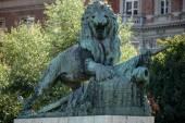Statue of a Lion guarding the Margaret Bridge in Budapest — Foto de Stock