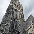 St Stephens Cathedral in Vienna — Stock Photo #59568457