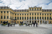 Horses and carriags at the Schonbrunn Palace in Vienna — Stock Photo