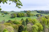 Surrey Countryside — Stock Photo