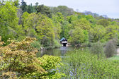 View of  the Boathouse at Winkworth Arboretum in Hascombe, Surre — Stock Photo