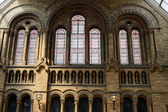 Interior view of the Natural History Museum in London on june 10 — Stock Photo