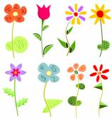 Colored floral set — Stock Vector