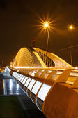 Trojan Bridge — Stock Photo