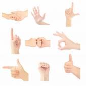 Set of gesturing hands — Stock Photo