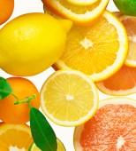 Citrus fruits on white — Stock Photo