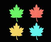 Red, green, blu and orange maple leaf — Stock Photo