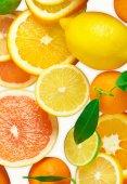 Citrus fruits on white — Foto de Stock