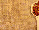 Spices on burlap — Foto Stock