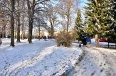 Snowy walk in park — Fotografia Stock