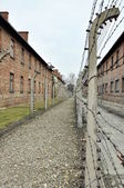Concentration camp auschwitz — Foto Stock