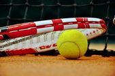 テニス ラケットとボール — ストック写真