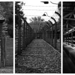 Auschwitz-Birkenau — Stock Photo #55732609