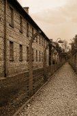Concentration camp - Auschwitz-Birkenau — Foto de Stock