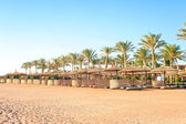 Row of wattled straw umbrellas on sunny beach. Egypt. Sharm-el-s — Stock Photo